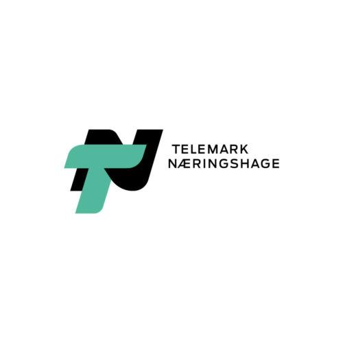 Telemarks Næringshage logo positivform